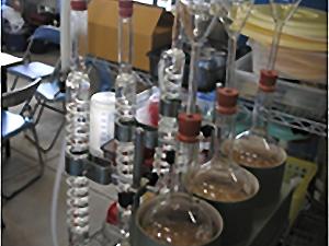 微生物バイオテクノロジー