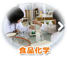 食品化学(科目)