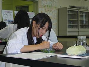 植物バイオテクノロジー