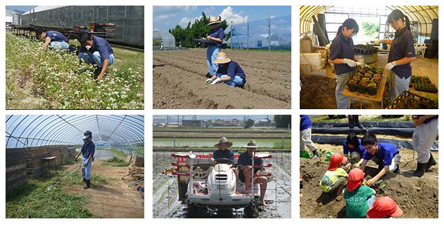 作物栽培コース