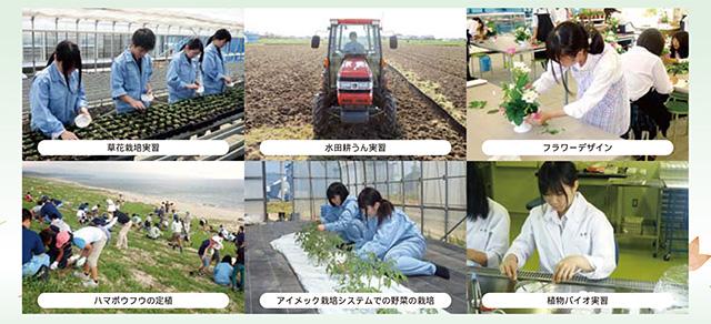 植物科学科の特徴2