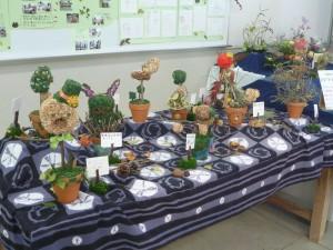 植物科学科展