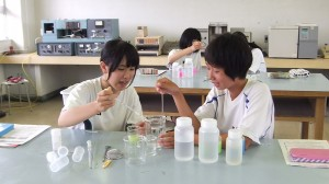 酵母の実験