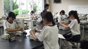 動物バイオ実験