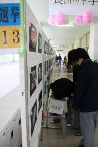 写真部の展示