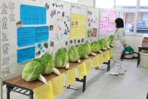 「農業と環境」の展示