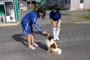 動物の飼育管理