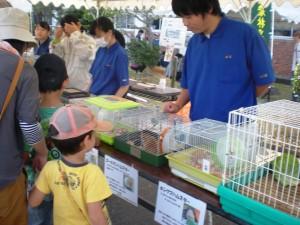 「農業技術センター」小動物展示