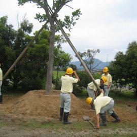 【環境科学科】 樹木の移植実習を行いました!!(造園デザインコース)