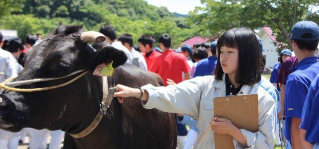 「農業クラブ連盟家畜審査競技県大会」開催!!