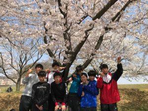 桜も満開でした