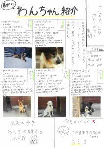 アニマル新聞9月号1圧縮