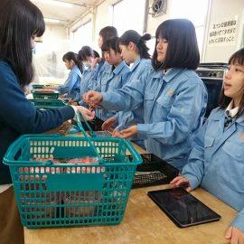 【食品科学科】11月の様々な行事等