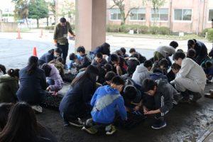【植物バイオ部門】長浜小学校でハマボウフウの成果発表会が行われました!