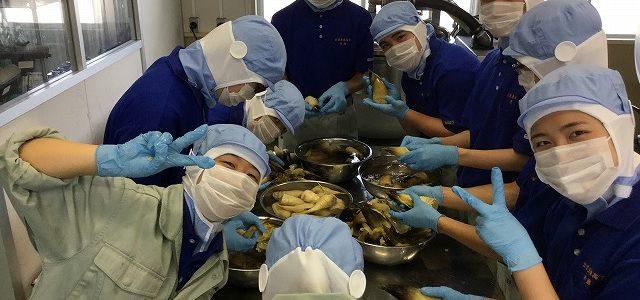 【食品科学科】筍の水煮缶詰実習を行いました
