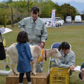 【動物科学科】今年初めての移動動物園を開催しました!!