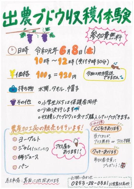 チラシ (1)