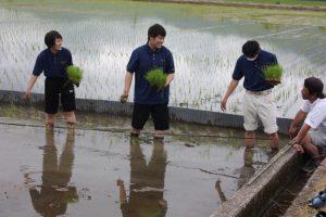 環境科学科1年生 田植え風景