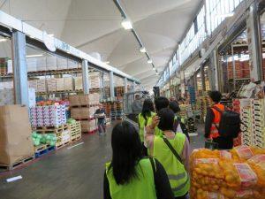 ②Hamberger Gro-markt Berlin GmbH(8月22日) 施設内の視察 (1)