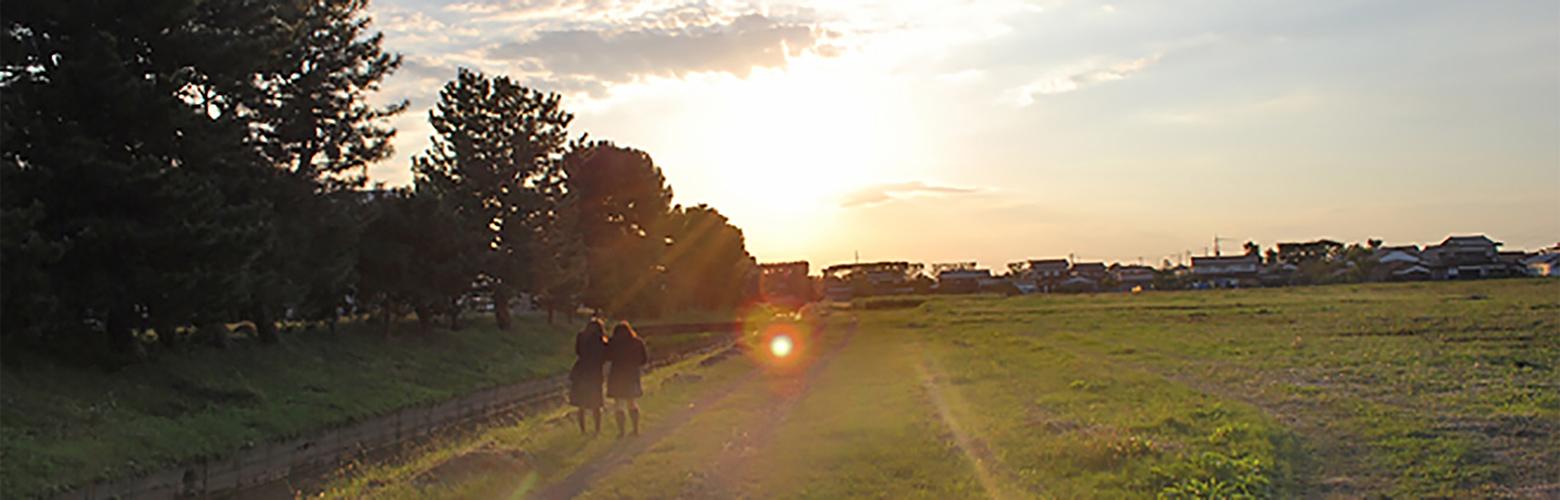農場の夕日