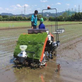 スマート農業を体験