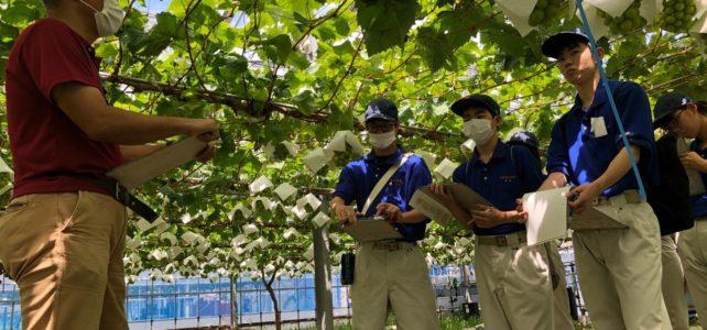 【食品科学科】農業技術センター果樹研究圃場への視察