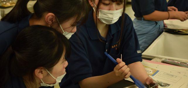 【食品科学科】3年生食品製造の授業の様子