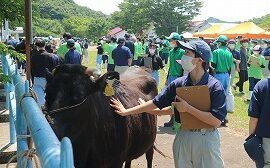 【動物科学科】農業クラブ家畜審査競技県大会開催