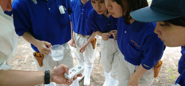 【食品科学科】糖度測定【一人一樹木シリーズ】